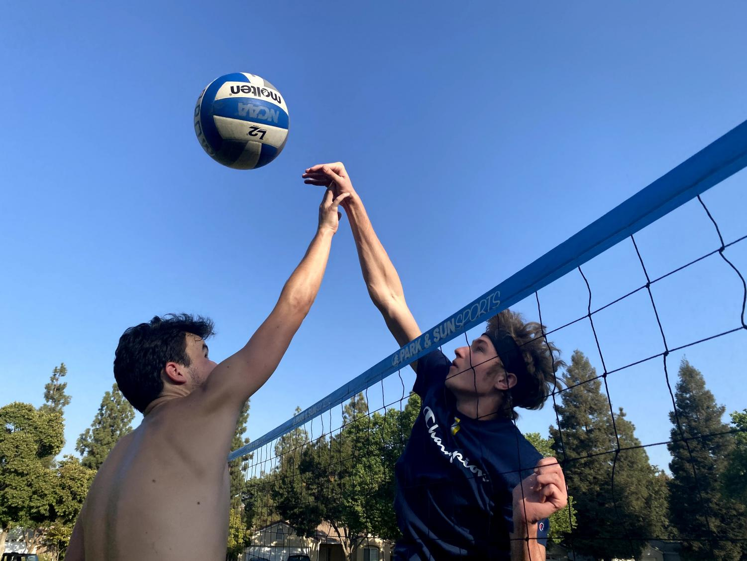 At The Net With Volleyball